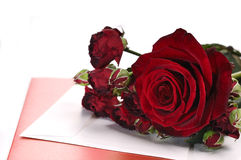 Red Roses and Card. Red roses, a card and envelope on white background Stock Images