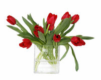 Red roses in clear vase. Beautiful red roses in glass vase with clipping path Royalty Free Stock Photography