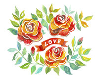 Red roses. Color illustration of flowers in watercolor paintings. Watercolor clip art Vector Illustration