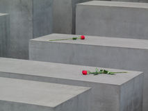 Red Roses On Concrete Block Symbolic Graves. Red Roses On Symbolic Graves Royalty Free Stock Images