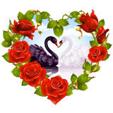 Red Roses and couple Swans. Vector red Rose frame in the shape of heart and couple swans Stock Photography