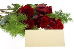 Red roses with a cream-colored place card Stock Photo