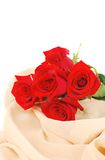 Red roses on the cream fabric Stock Images