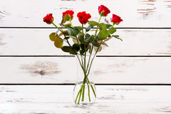 Red roses in curvy vase. Royalty Free Stock Photography