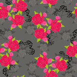 Red roses. And deep gray  background Royalty Free Stock Images