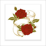 Red roses, element for design Stock Images