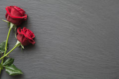 Red roses on empty slate background. Red roses on slate background with space for text stock photo