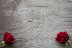 Red roses on empty wooden background. Red roses on background with space for text royalty free stock photo