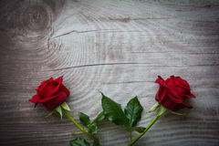 Red roses on empty wooden background. Red roses on background with space for text royalty free stock photos