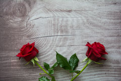 Red roses on empty wooden background Stock Images