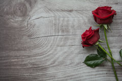 Red roses on empty wooden background. Red roses on background with space for text stock image