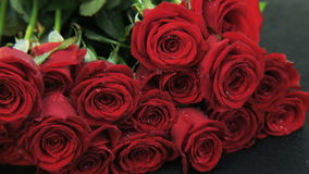Red Roses Falling Down stock video footage