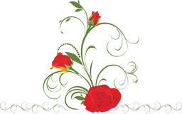 Red roses with floral ornament Stock Photography