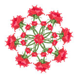 Red Roses Floral Ornament Royalty Free Stock Photos