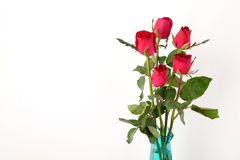Red roses flower bouquet isolated on white background Royalty Free Stock Photos