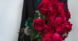 Red roses flower gift. Man is giving red roses bouquet Royalty Free Stock Photo