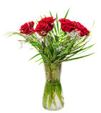 Red roses flowers in a floral arrangement, bouquet, transparent vase close up, isolated Royalty Free Stock Image