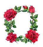 Red roses flowers - floral border. Watercolor frame royalty free illustration