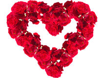 Red roses in the form of heart on a white background closeup Royalty Free Stock Images