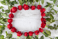Red roses forming a circle Stock Images