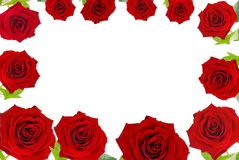 Red roses frame Royalty Free Stock Image