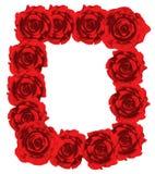 Red roses frame stock image
