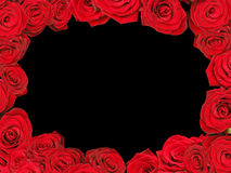 Red roses frame stock photos
