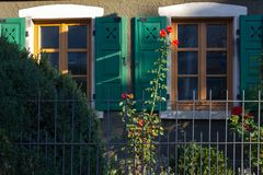 Red roses on framework facade with window green shutters. On a sunny summer morning in south germany city schwaebeisch gmuend stock photos