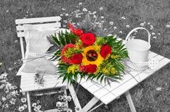Red Roses garden color key Stock Photos