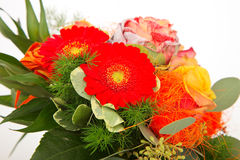 Boquet of flowers. Red roses, gerbers and ornamental cabbage in a boquet stock photography