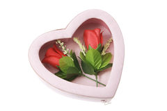 Red Roses in Gift Box Stock Images