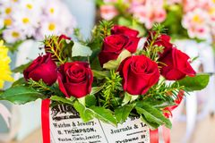 Red roses in a gift box. Beautiful bouquet of roses in a gift box. Bouquet of red roses. Red roses close-up royalty free stock photography