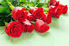 Red roses in a gift Royalty Free Stock Image