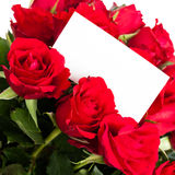 Red roses with gift tag. Stock Photo
