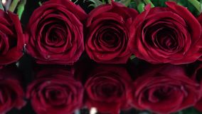 Red roses on Glass with Reflection. Close-up of red roses with defocused reflection stock footage
