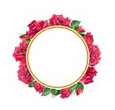 Red roses, golden round border. Watercolor round frame with flowers and gold for Valentine day. Red roses with golden round border. Watercolor round frame with vector illustration
