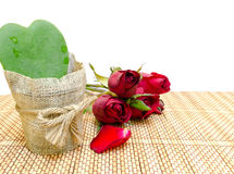 Red Roses and Green Heart. Green leaf heart beside four red roses Royalty Free Stock Photos