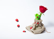 Red roses in a green vase Royalty Free Stock Photos