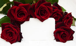 Red roses and greeting card Royalty Free Stock Photo