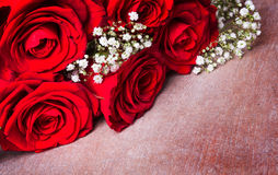 Red roses and gypsophila Royalty Free Stock Images