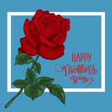 The red roses with Happy Mother s Day gift card. The red roses with Happy Mother`s Day gift card. Photo-realistic mesh vector illustration Royalty Free Illustration