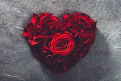 Red roses in heart shape royalty free stock photos
