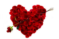 Red Roses Heart shape. Rose Pedal Heart shape on white background Stock Photos