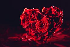 Red roses in heart shape on silk background royalty free stock photo