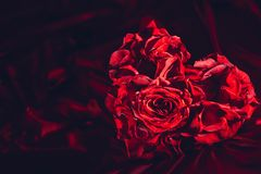 Red roses in heart shape on silk background stock photography