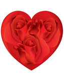 Red roses in heart with white background Royalty Free Stock Photography
