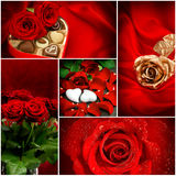 Red roses. Hearts. Valentines Day Stock Image