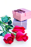 Red roses and holiday gift. Stock Images