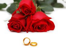 Red roses isolated on the white background. Red roses isolated on  the white background Stock Images