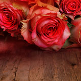 Red roses for a love message Royalty Free Stock Image